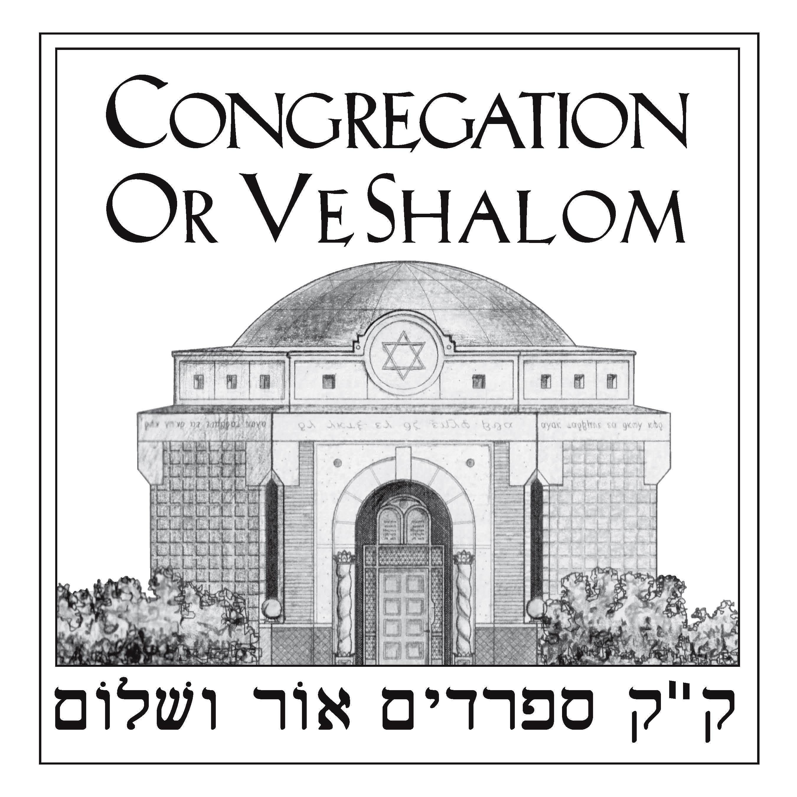 Cong OVS logo
